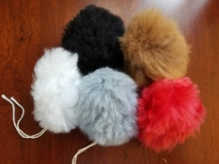 Photo of Pom Poms