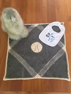 Baby Boy Blanket, Doll and Bib set