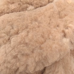 Skirted Alpaca Fleece