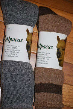 Alpaca Socks - Terry