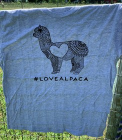 #LOVEALPACA T-Shirt- Gray