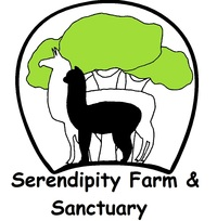 Serendipity Farm & Sanctuary - Alpacas & Llamas - Logo