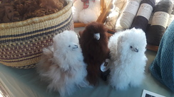 Alpacas, small fluffy alpacas