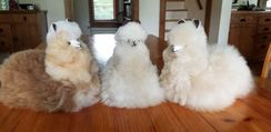 Alpaca Stuffed Toy - Sitting