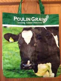 Photo of Reusable Tote Bag--DAIRY