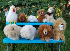 Photo of Cute and Cuddly Stuffed Animals