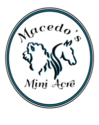Macedo's Mini Acre - Logo