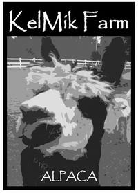 KelMik Farm Alpacas - Logo