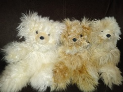 Suri Alpaca Bears