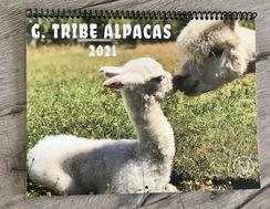 G.Tribe Alpacas 2021 Calendar