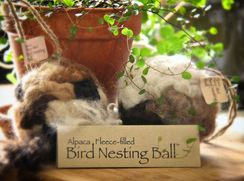 Photo of Bird Nesting Ball