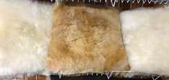 Alpaca Fiber Pillows