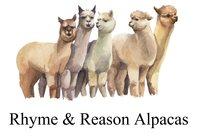 Rhyme & Reason Alpacas - Logo
