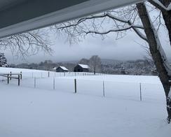 Photo of Cottage Rental & Farm Tour