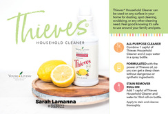 Thieves cleaner (#3743)