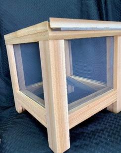 Cedar Fly Trap