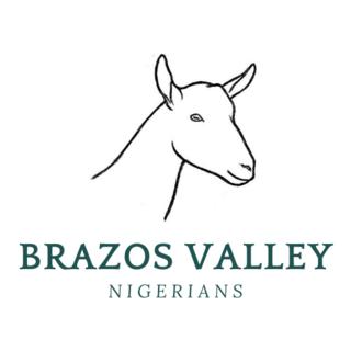 Brazos Valley Nigerians - Logo