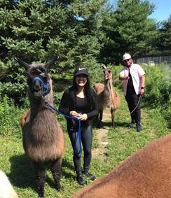 July 2021 Llama walk!!