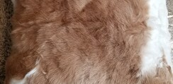 Alpaca Fiber Pillows