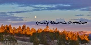 Quartz Mountain Homestead - Logo