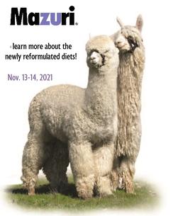 MAZURI :  YOUR ALPACA DIET