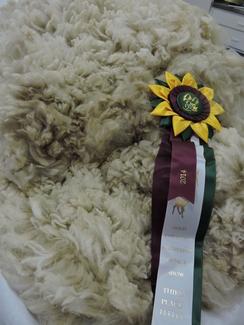 White Alpaca Blanket Fiber - Cora Lee