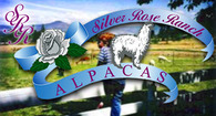 Silver Rose Ranch Alpacas - Logo