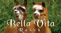 Bella Vita Ranch - Logo