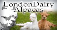 LondonDairy Alpacas & Alpaca Threads Fiber Studio - Logo