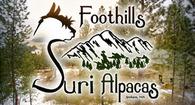 Foothills Suri Alpacas - Logo