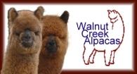 Walnut Creek Alpacas - Logo