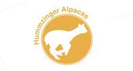 Hummzinger Alpacas - Logo