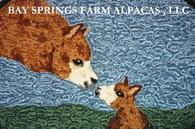 Bay Springs Farm Alpacas, LLC - Logo
