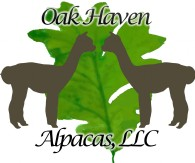 Oak Haven Alpacas, LLC - Logo