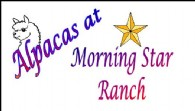 Alpacas at Morning Star Ranch - Logo