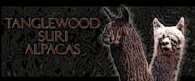 TangleWood Suri Alpacas - Logo