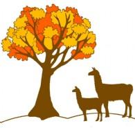 Autumn Hill Llamas & Fiber - Logo