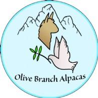 Olive Branch Alpacas - Logo