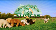 Sunset Hills Farm Alpacas LLC - Logo