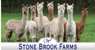 Stone Brook Farms - Logo