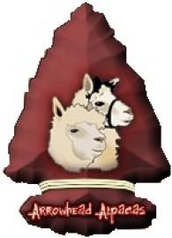 Arrowhead Alpacas - Logo