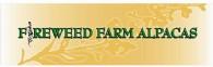 Fireweed Farm Alpacas - Logo