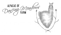 Alpacas of Dancing Meadows - Logo