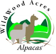 WildWood Acres Alpacas - Logo