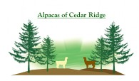 Alpacas of Cedar Ridge - Logo