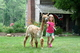 Alpacas are Fun!