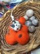 pumpkins no longer available
