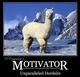 Photo of TP Poseidon's Motivator