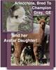 Photo of Craigieburn's Arlecchina & Daughter