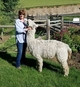 Photo of Abundantly Blessed Heavenly Joy & Cria